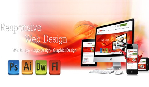 Professional Website Designer